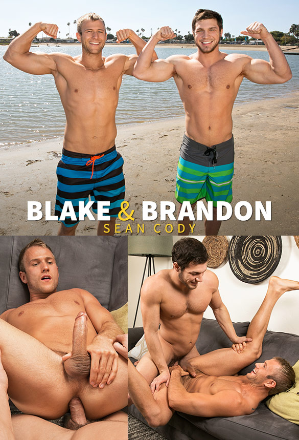 Sean Cody: Brandon fucks Blake raw