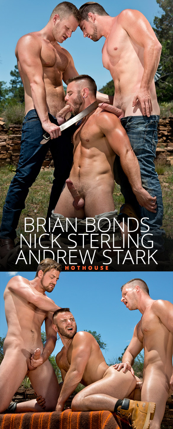 HotHouse: Andrew Stark, Brian Bonds and Nick Sterling's hot outdoor threeway