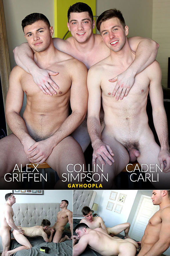 GayHoopla: Collin Simpson, Alex Griffen and Caden Carli fuck each other